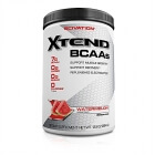 Xtend, 384 g, Scivation